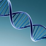 3d-pictures-dna-3d-pictures